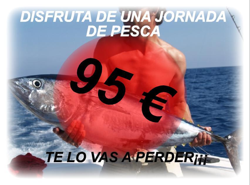 Robalo 220 cambrils charter alquiler de barcos for Robalo fish in english